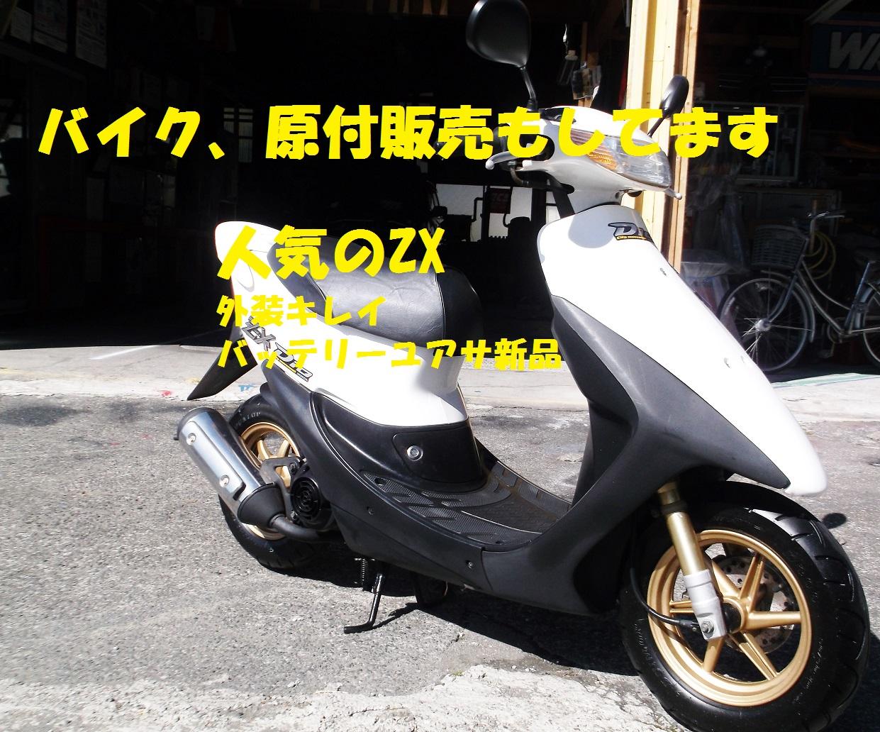 dio75000zx.jpg