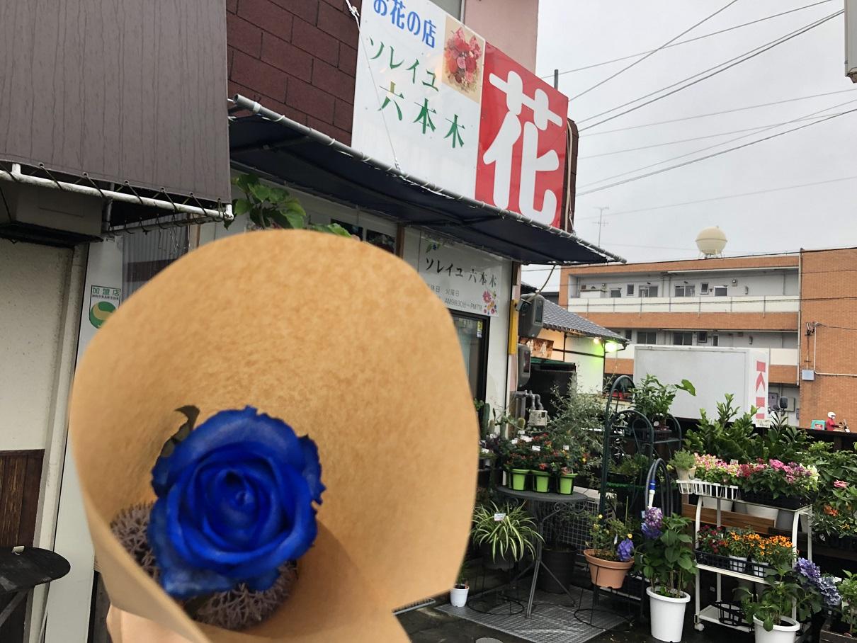 ソレイユ六本木さんの青色の薔薇
