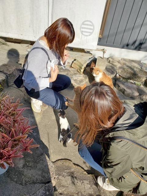 sakushima20201024.JPG